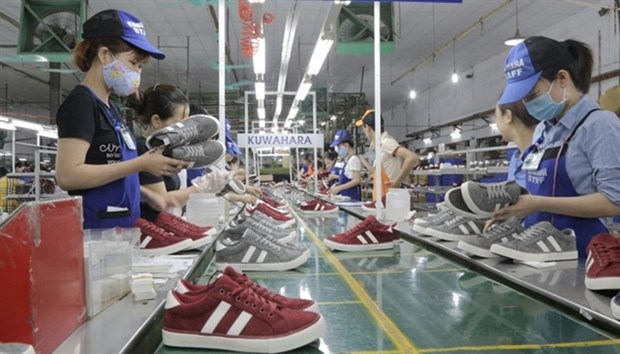 Footwear exports fall in many markets hinh anh 1