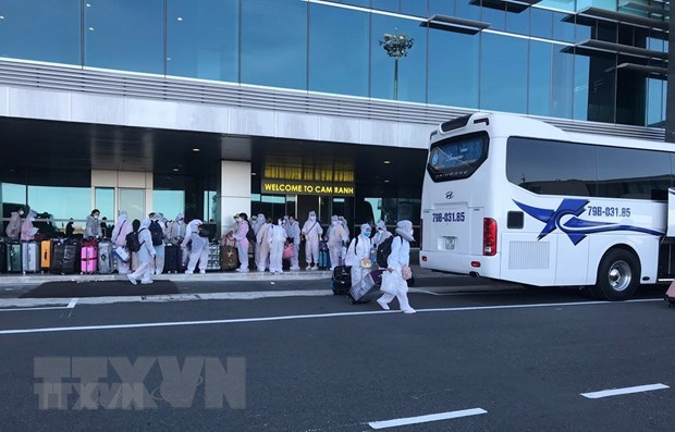More than 350 Vietnamese citizens flown home from Japan hinh anh 1