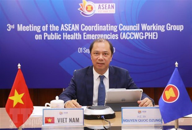 ASEAN cooperation in COVID-19 fight reviewed hinh anh 1