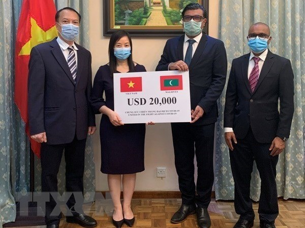 Vietnam offers aid to Maldives to battle COVID-19 hinh anh 1