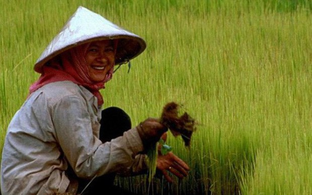 Cambodia suggested spending more on poverty reduction hinh anh 1