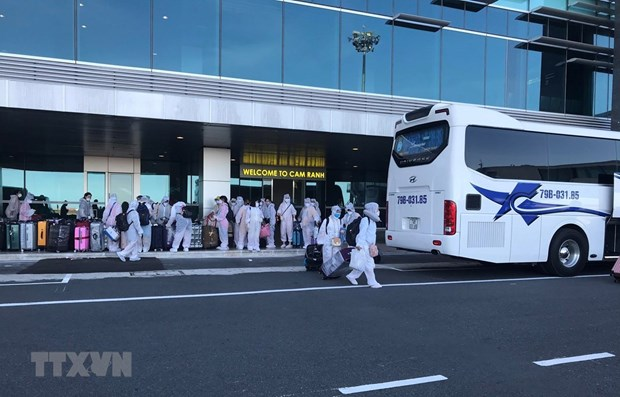 Over 350 Vietnamese citizens brought home from Japan hinh anh 1