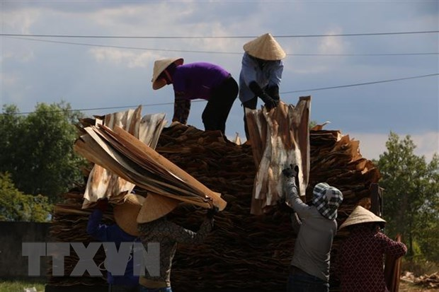 Eight-month wood export turnover up 10.3 percent hinh anh 1