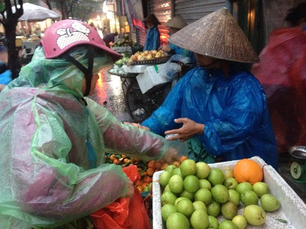 Labourers from informal sector to benefit from second support package hinh anh 1