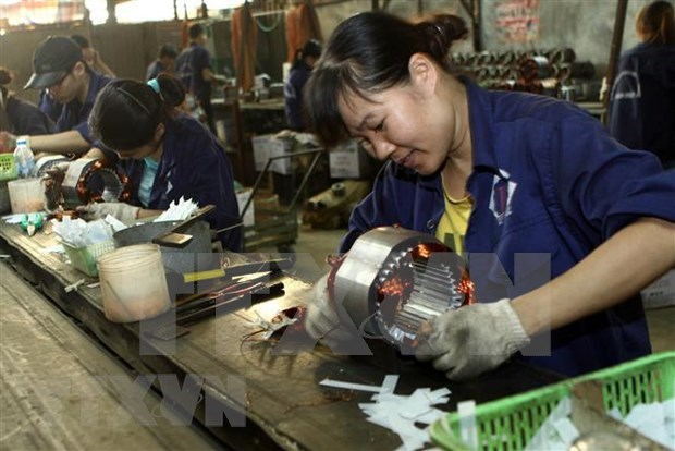 Laos-Vietnam trade unlikely to reach target due to COVID-19 hinh anh 1