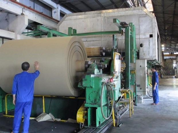 Paper companies see bright prospects as demand increases hinh anh 1