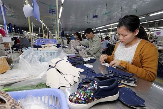 Domestic trade to contribute 13.5 percent of GDP by 2025 hinh anh 1