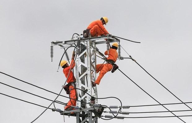 Power sector seeking ways to grow further hinh anh 1