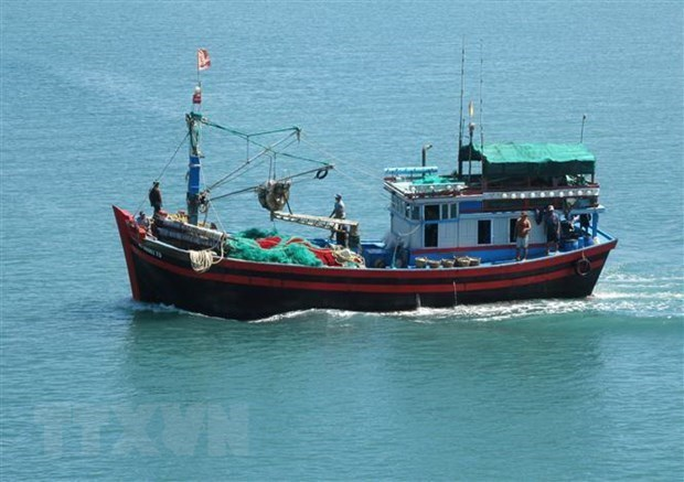 Stronger measures needed to combat IUU fishing: Deputy PM hinh anh 1