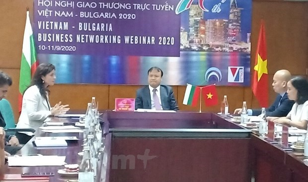 Vietnamese, Bulgarian enhance trade ties hinh anh 1