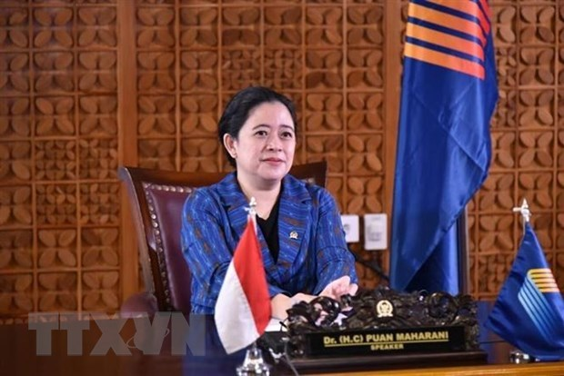 Indonesia's House Speaker appreciates Vietnamese NA's effort hinh anh 1