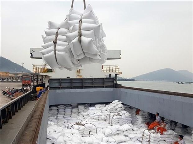 Nine Vietnamese fragrant rice varieties given tariff quotas in EU hinh anh 1