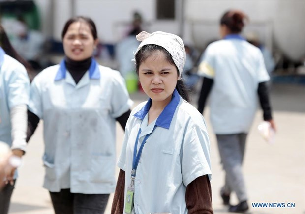 Cambodia raises minimum wage for garment industry amid COVID-19 outbreak hinh anh 1