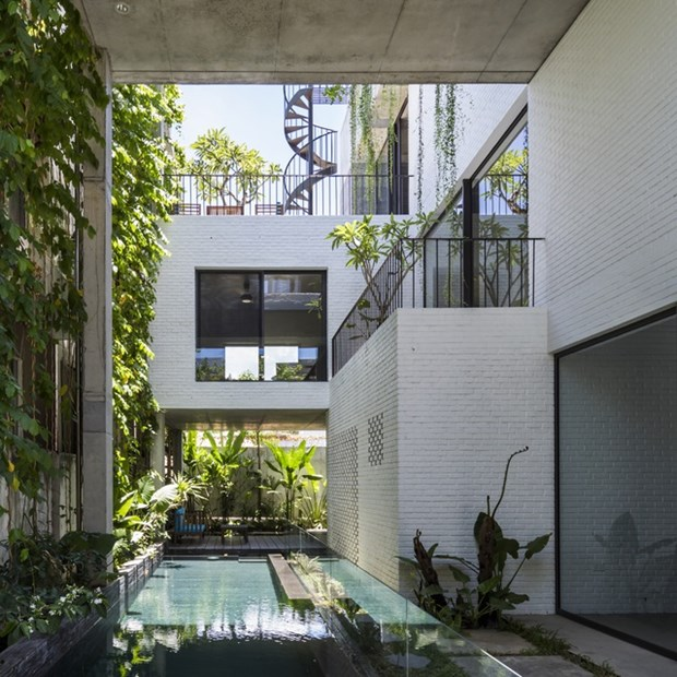 Architect Vo Trong Nghia wins more international awards hinh anh 1