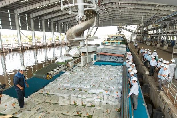 Ca Mau fertiliser plant's urea output hits 7 million tonnes after ten years hinh anh 1