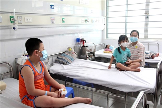 People warned not to be complacent about dengue fever hinh anh 1