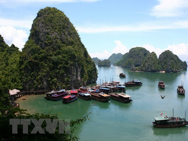 Quang Ninh cuts sight-seeing fees till year's end hinh anh 1