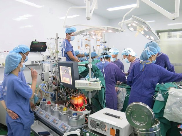 Record number of organ transplants performed hinh anh 1