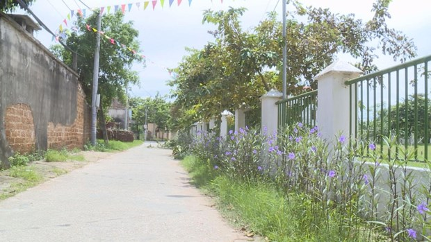Residents in Dong Tam commune join hands to build new-style rural area hinh anh 1