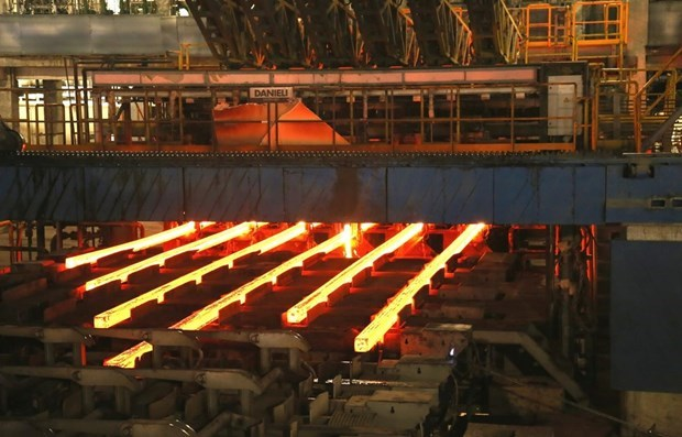 Steelmaker Hoa Phat increases market share to 32 pct. hinh anh 1