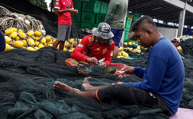 Malaysia: Allowance for fishermen bumped up to 300RM hinh anh 1