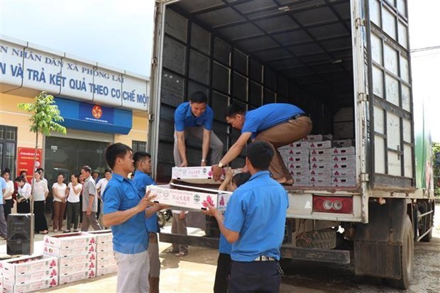 Ben Tre announces first shipment of fruit to EU after EVFTA takes effect hinh anh 1
