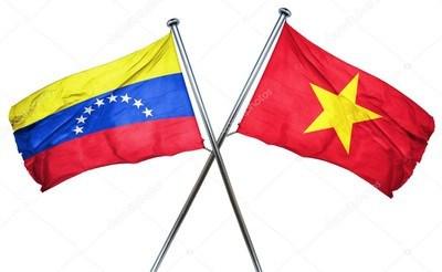 Vietnam, Venezuela hold eighth deputy ministerial-level political consultation hinh anh 1