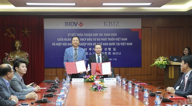 BIDV, RoK federation promote cooperation hinh anh 1