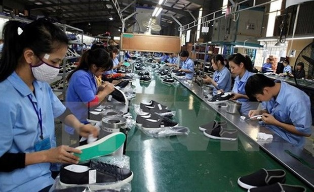 Footwear exports likely to fall short of target due to COVID-19 hinh anh 1