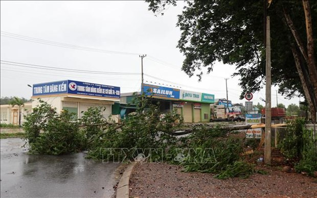 Localities deal with consequences of Storm Noul hinh anh 1