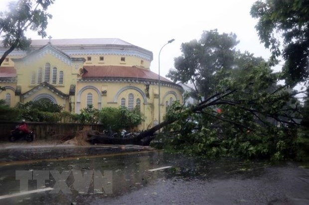 Storm Noul makes landfall in Thua Thien-Hue hinh anh 1