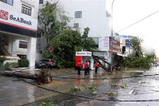 Storm Noul leaves one dead, several injured in Thua Thien-Hue hinh anh 1