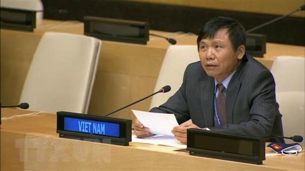 National defence tradition makes Vietnam's success at UN: Ambassador hinh anh 1
