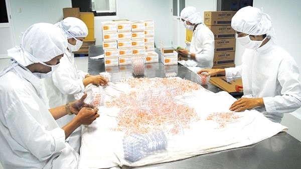 Support for domestic pharmaceutical industry to rise in Vietnam hinh anh 1