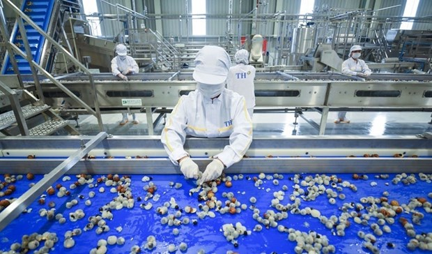 Fresh fruit-herb processing factory comes into operation in Son La hinh anh 1