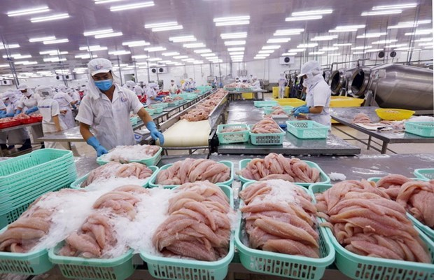 EVFTA brings new impetus for Vietnam's fishery exports hinh anh 1
