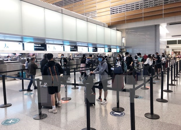 Over 220 Vietnamese citizens flown home from Japan hinh anh 1