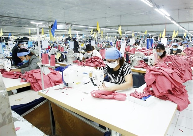 Vietnam needs to develop raw materials production to take advantage of EVFTA hinh anh 1