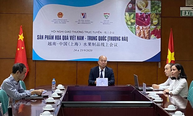 Business matching event looks to boost fruit trading with Shanghai hinh anh 1