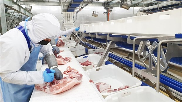 Masan to inaugurate 2nd meat processing complex hinh anh 1