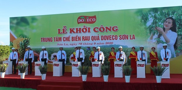 Construction begins on big fruit processing complex in Son La hinh anh 1