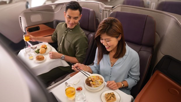 """Singapore Airlines drops """"flight to nowhere"""" plan hinh anh 1"""