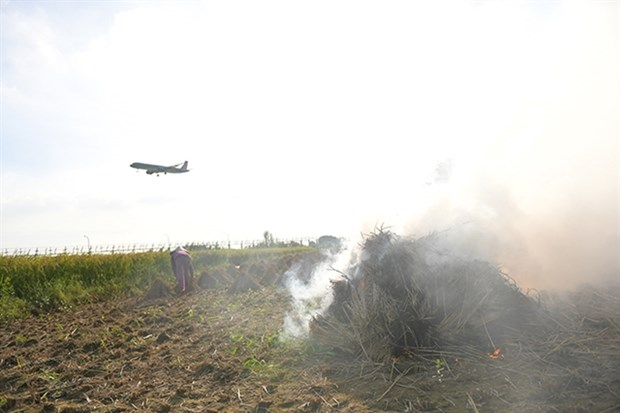 Straw burning threatens flight safety: aviation official hinh anh 1