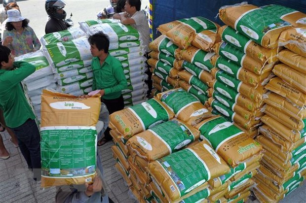 Cambodia wins rice battle at EU Court hinh anh 1