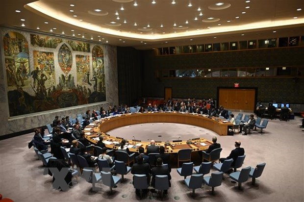 Vietnam backs UN, AU efforts to ensure peace in Africa hinh anh 1