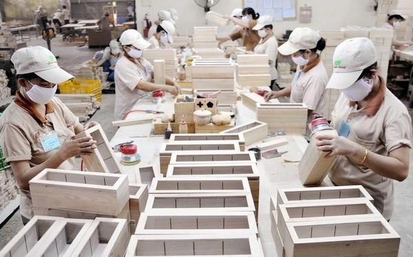 Canadian market holds potential for wooden furniture exports: Experts hinh anh 1