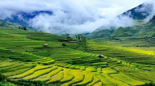 Vibrant atmosphere return to northern tourism sites hinh anh 1