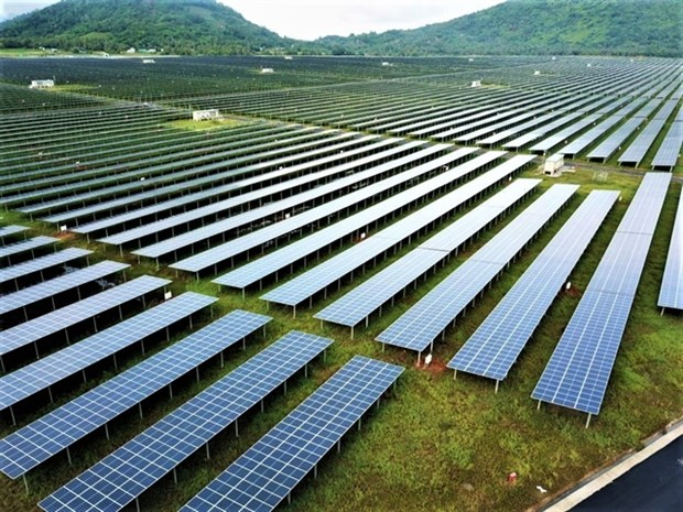 Time to think about recycling of end-of-life solar panels: experts hinh anh 1