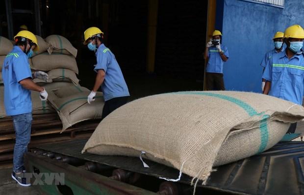 Vietnam, Algeria boost online trade amid COVID-19 hinh anh 1