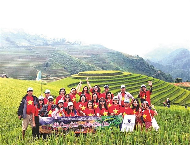 Quality tours at affordable prices needed to stimulate tourism market hinh anh 1